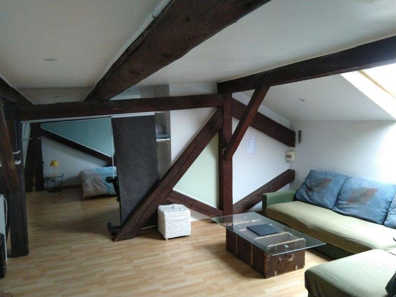 Superbe Duplex de 96m² plein centre proximité gare, Ferienwohnung in Vandoeuvre-les-Nancy