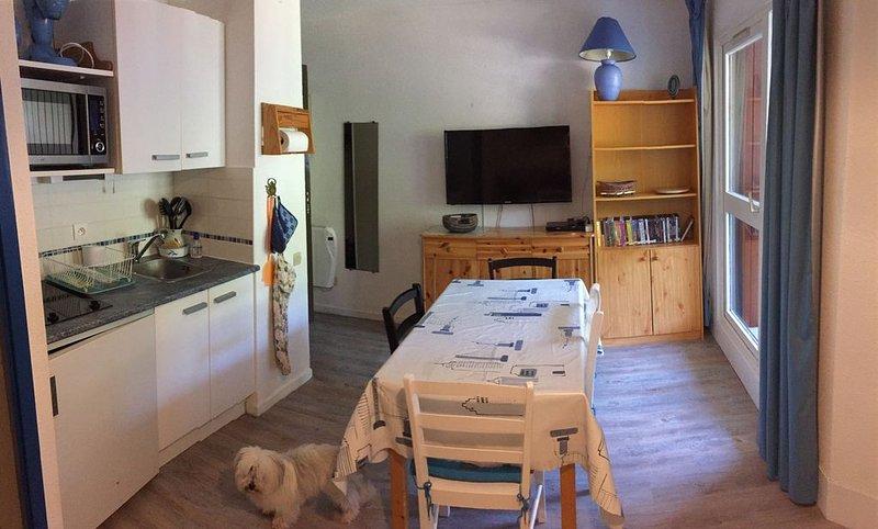 Appartement au pied des pistes, tout confort, commerces, Morillon les Esserts, alquiler vacacional en Morillon