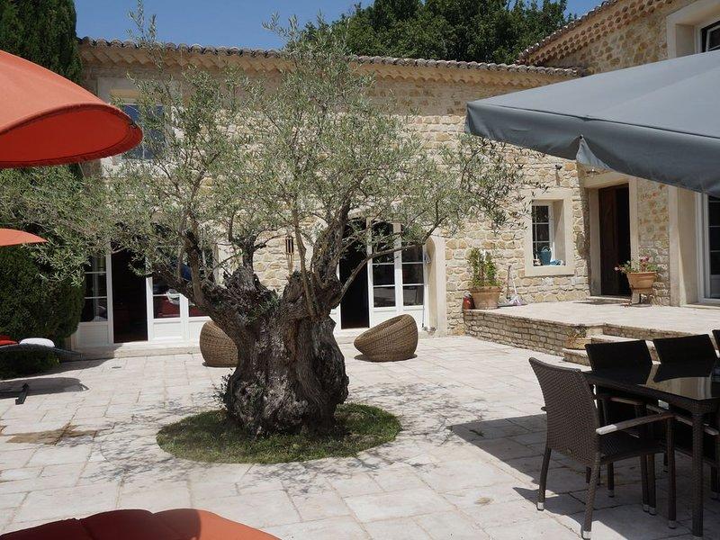 Belle environnement pour cette propriété situé au milieu d'un parc de 3 hectare, vacation rental in Puygiron