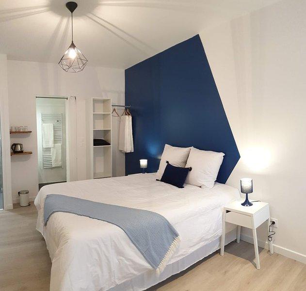 Chambre 'Bleu impérial' - Hyper-centre Epernay, location de vacances à Saint-Martin-d'Ablois