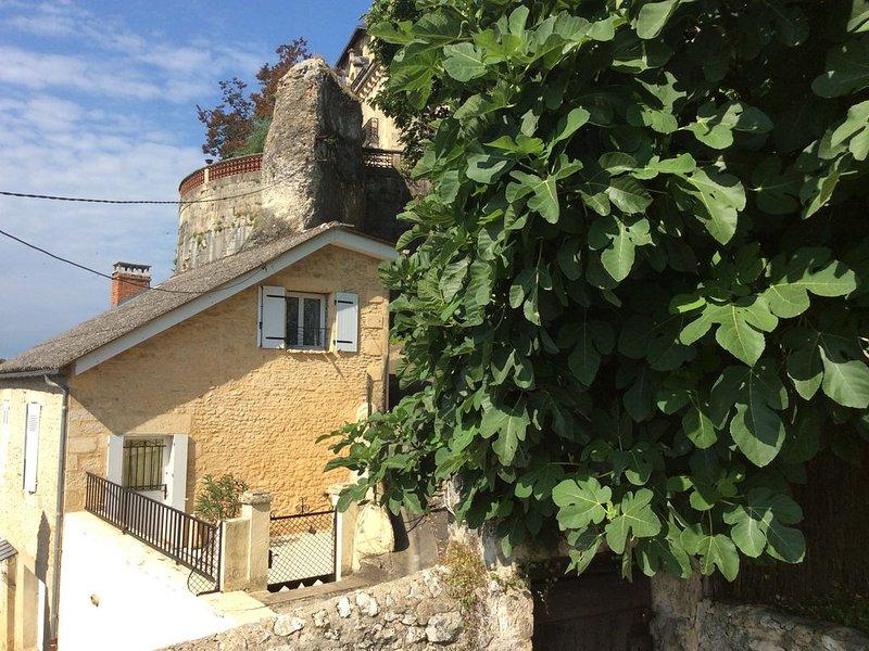 Maison de caractère à Montignac Lascaux, vacation rental in Aubas
