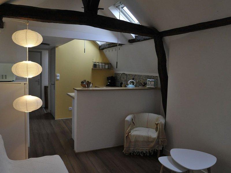 Tours historique, appartement entièrement rénové, location de vacances à Joué lès Tours