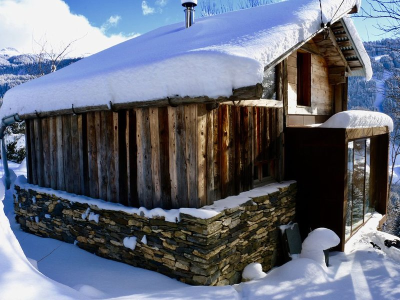 Petit Chalet en montagne, holiday rental in Flumet