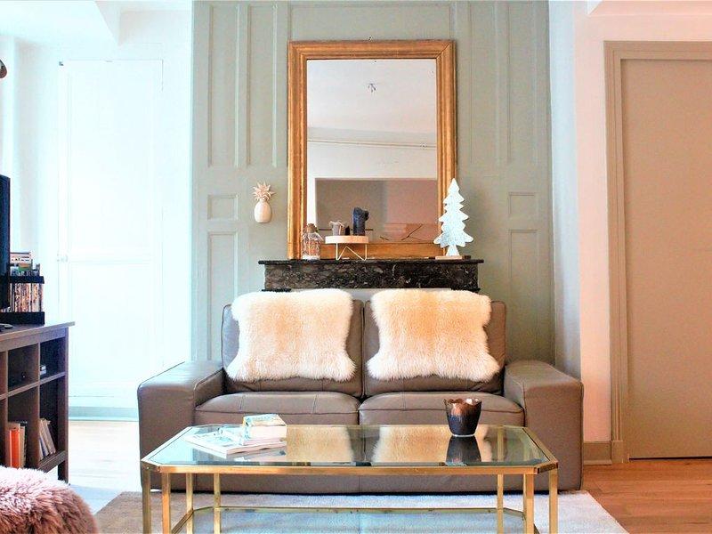 Appartement de charme au cœur du centre historique, holiday rental in Tours