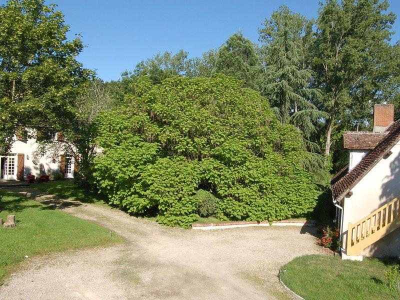 Gîte Sud Sologne, pleine nature,  Bain nordique ext, parc 1,5H, petit étang, holiday rental in Gracay