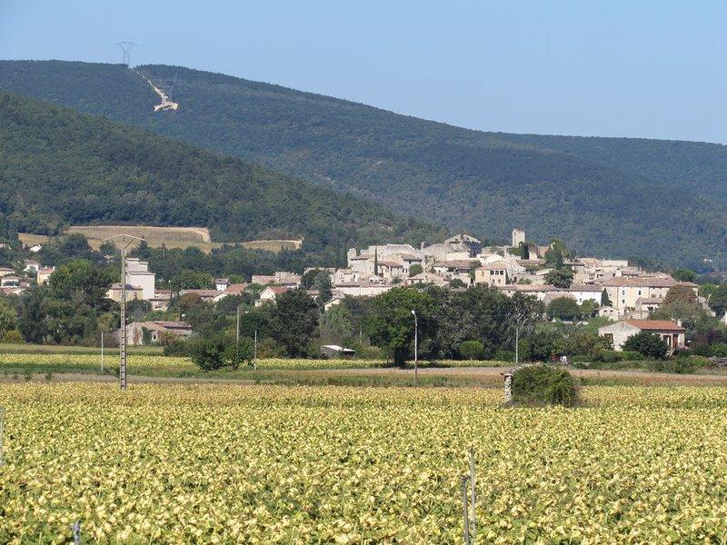 Gite en Drôme Provençale, holiday rental in Cliousclat