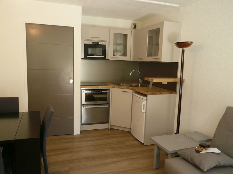 Location appartement montagne, holiday rental in La Mongie