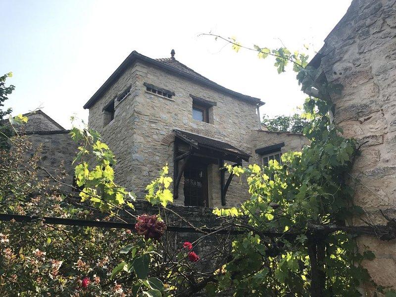 Maison de village en Pierre avec Pigeonnier et grande Terrasse, holiday rental in Nuzejouls
