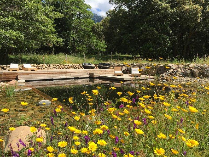 Cottage en pleine nature, piscine naturelle et jardin bio, vacation rental in Petreto-Bicchisano