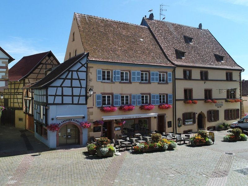 Grand gite du Château Fleurie Eguisheim, holiday rental in Eguisheim