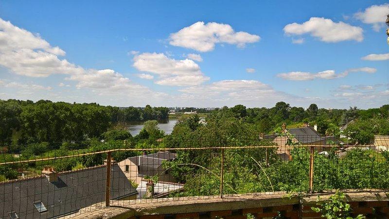 Gite Troglodyte Atypique - Suite du Jardin, vue sur la Loire - près des châteaux, holiday rental in Monnaie