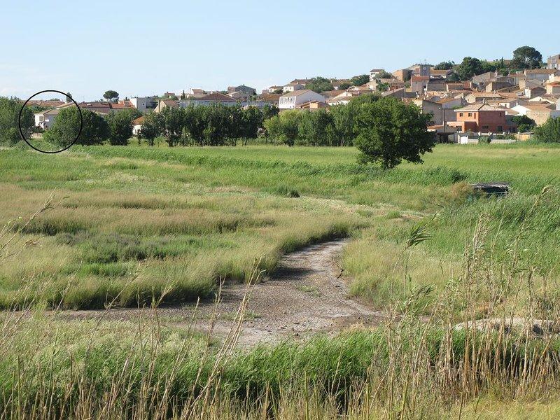 Villa bord de village, près de l'étang,  piscine, mer à 6km, location de vacances à Lespignan