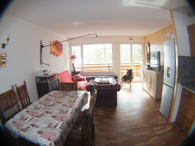 Grand appartement F3  plein sud horizon 1800 ☆☆☆, location de vacances à Orcières