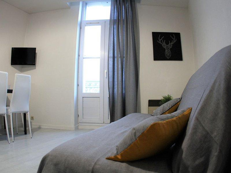 Bel appartement meublé face aux thermes idéal curistes et vacanciers, holiday rental in Vergeroux