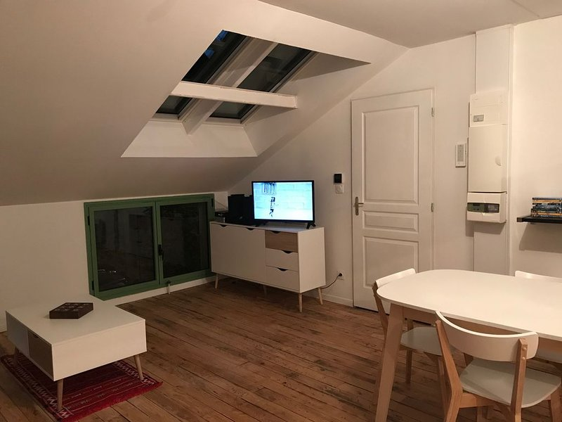 Logement cosy le petit bouchon - près de l'avenue de Champagne, location de vacances à Chavot-Courcourt