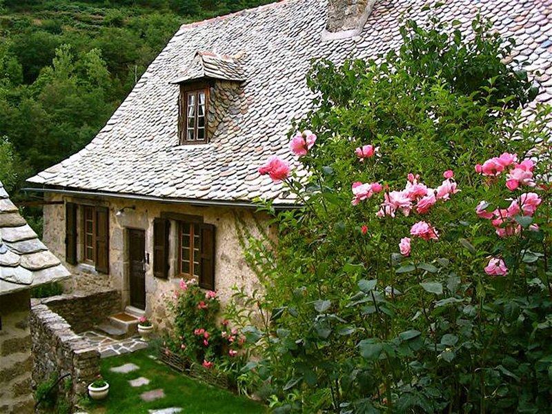 L' ancienne école  : Gite de charme au coeur de la vallée du lot., holiday rental in Senezergues