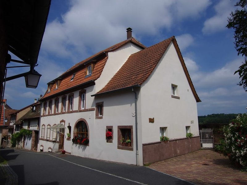 Appartement dans les remparts du château de La Petite-Pierre, holiday rental in Petersbach