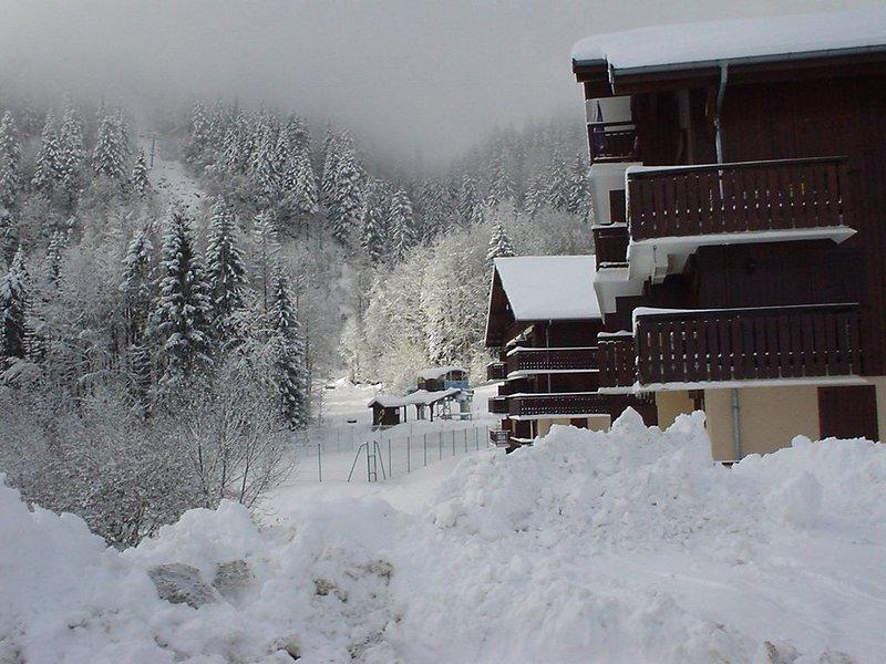 Studio 4 pers. à Hirmentaz Bellevaux en Haute Savoie, casa vacanza a Onnion