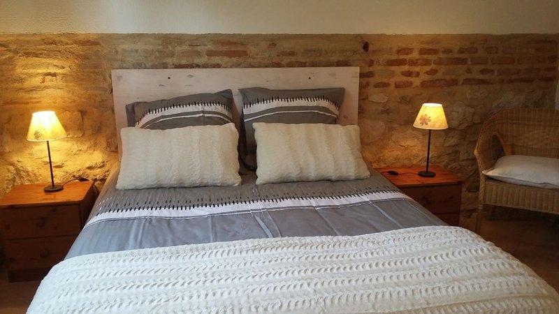 Gite de Charme entouré par des vignes et des espaces boisées, holiday rental in Tarn