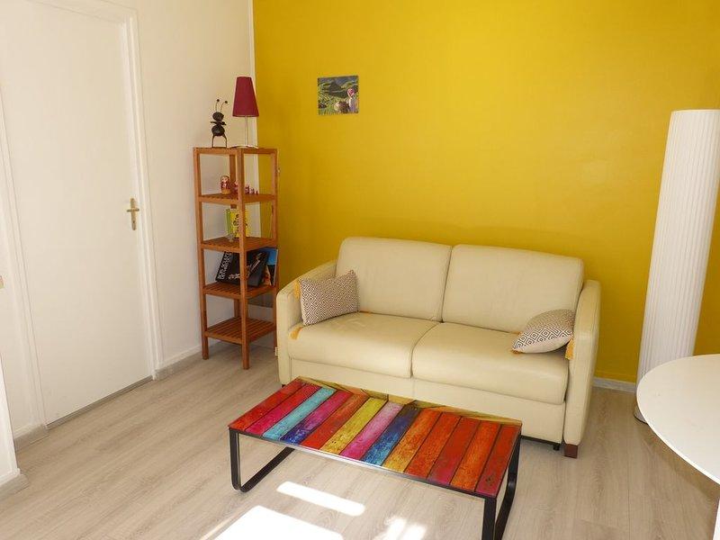 2 pièces 3*, lumière, espace, confort, hypercentre, vacation rental in Beurlay