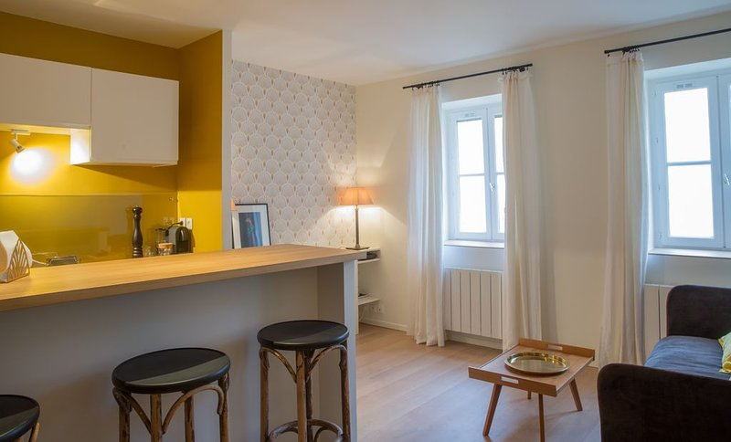 Appartement Cloître Des Capucins - Luxury Flat, holiday rental in Lyon