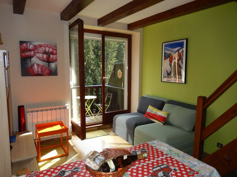 Centre Alsace en moyenne montagne LE HOHWALD appartement 4 personnes, holiday rental in Schirmeck