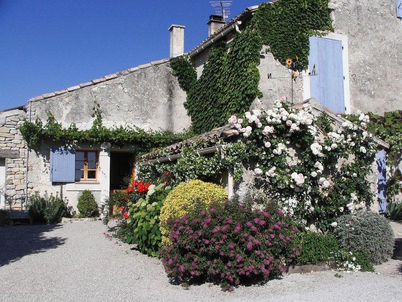 Tranquilité au milieu des vignes au coeur de Provence, casa vacanza a Vaucluse