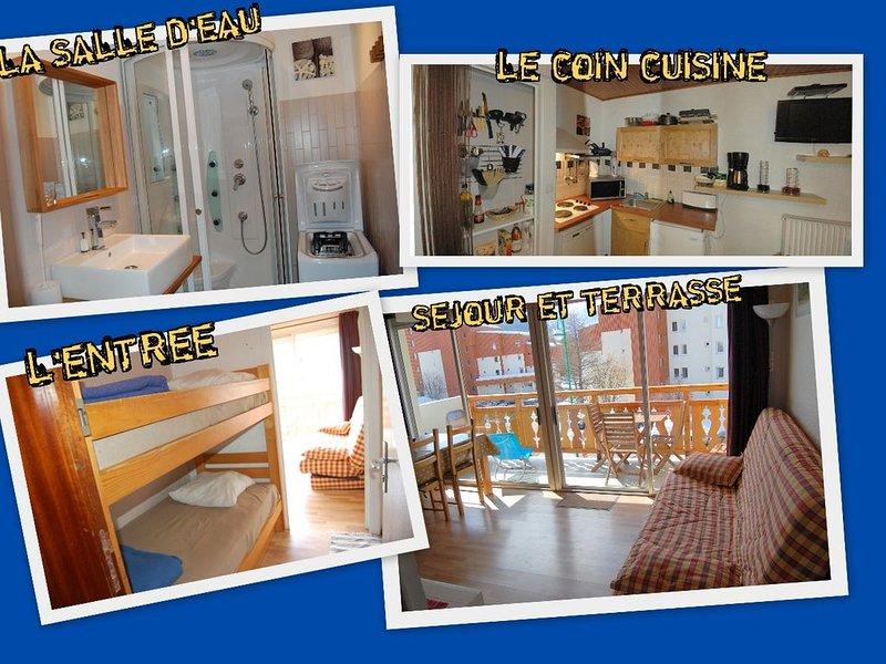 Appartement les 2 Alpes - Pied des pistes et centre station - pkg + placard skis, alquiler vacacional en Mont-de-Lans