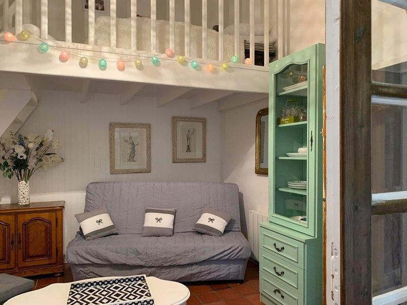 Maison  Animaux acceptés  jardin 1050 m2  Royan Cozes Meschers, vacation rental in Chenac-Saint-Seurin-d'Uzet