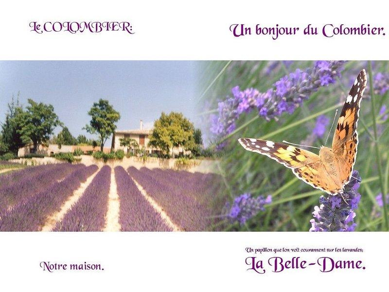 PLATEAU DE VALENSOLE Gite à la ferme sur exploitation de plantes à parfums., alquiler vacacional en Roumoules
