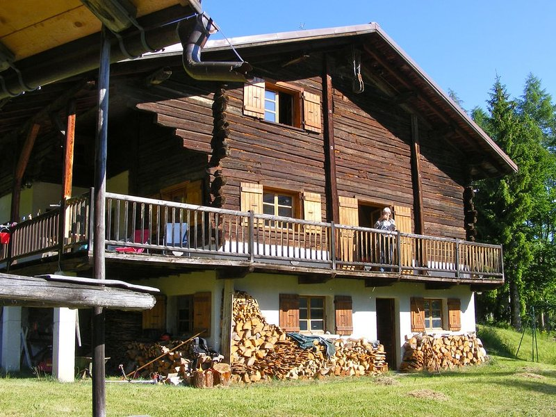 Grand chalet traditionnel beaufortain, holiday rental in Beaufort