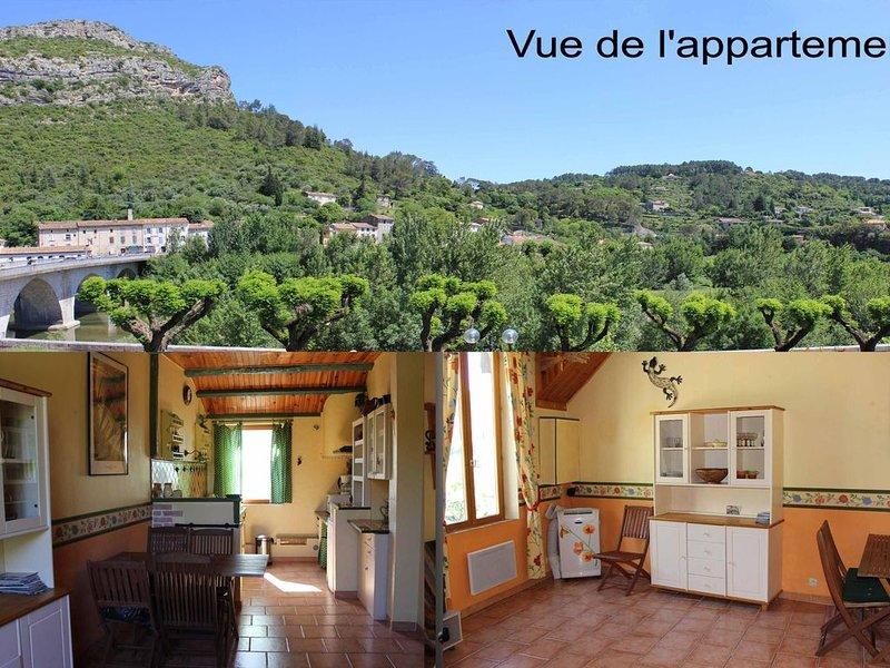 Très bel appartement / p3, tout confort, au centre Anduze, vue rivière, location de vacances à Anduze