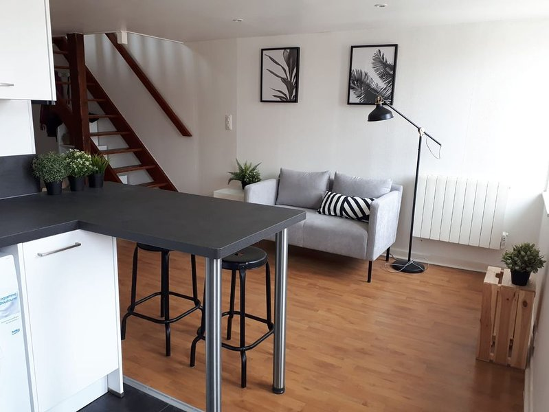 Beau duplex de 2 chambres dans le centre de Nancy, holiday rental in Nancy
