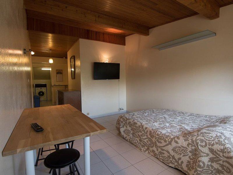 Le Petit CoCon ville la grand, vacation rental in Gaillard