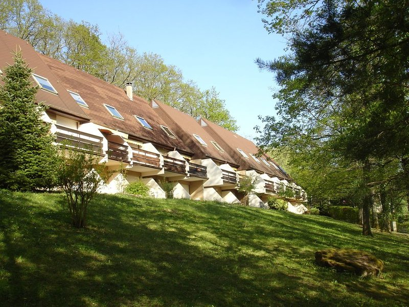 Appartement meublé 1 pièce pour location saisonnière Alsace, vacation rental in Natzwiller