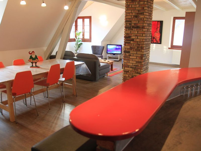 Les combles du boulanger, vacation rental in Ingersheim