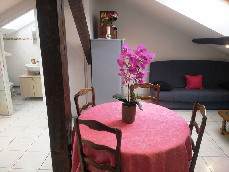 Appartement 5 personnes, holiday rental in Hadol