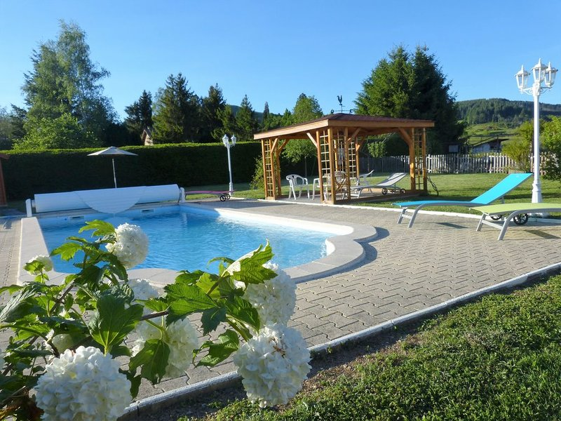the pool and its relaxation area
