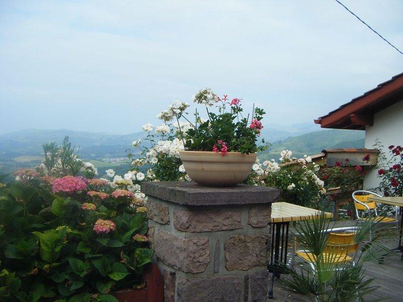 Sur les hauteurs du Pays Basque,  profitez du panorama et Camino Frances., location de vacances à Gaindola