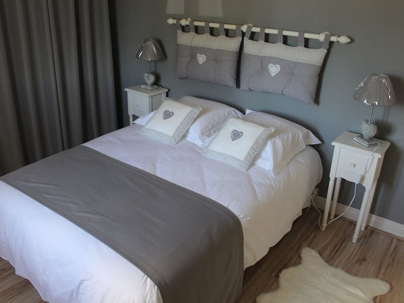 Le Petit Nid de Beauval, Maison Saint Aignan Centre Ville, vacation rental in Saint-Aignan