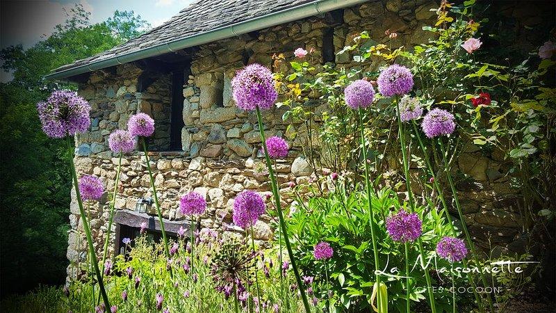 La Maisonnette : Gîtes de charme en Aveyron, au coeur de la vallée du Lot., holiday rental in Senezergues