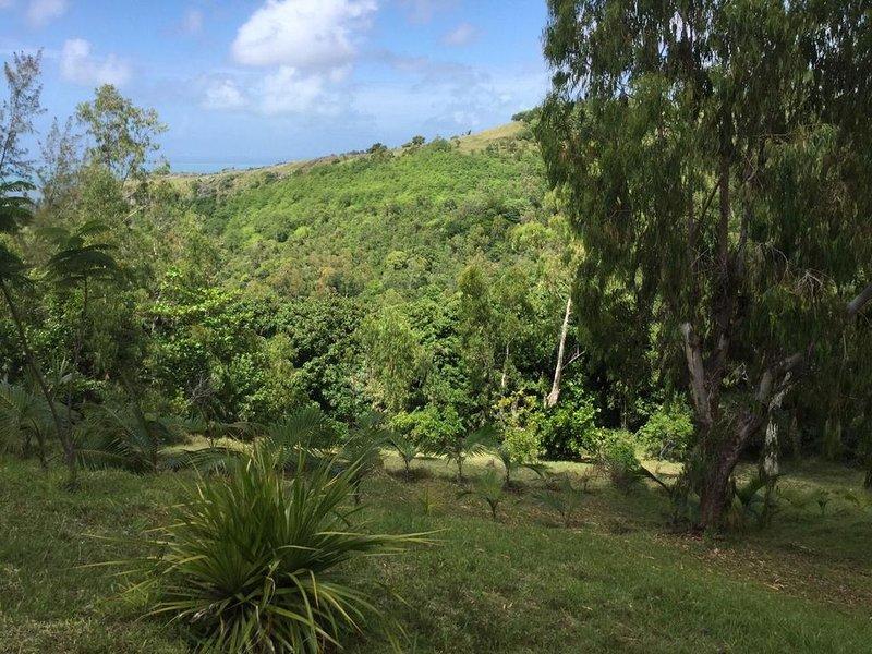 refuge baleine - maison de charme, vue degagee, holiday rental in Rodrigues Island