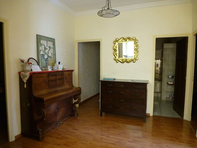 Grand appartement (150m²) de caractère/terrasse/ climatisé/, holiday rental in Peyrestortes