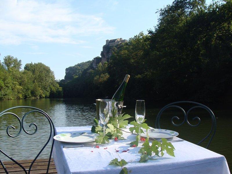 Charmante maison au bord de L'Aveyron pour amoureux de la nature., holiday rental in Puycelci