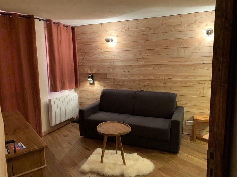 Méribel Mottaret, sur les pistes, appartement 1 chambre, bien exposé, comme neuf, vacation rental in Meribel Mottaret