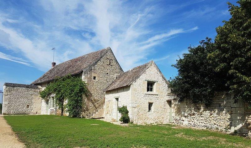 Le Logis des Vignes au Chateau de la Tour d'Oyré, location de vacances à Ingrandes