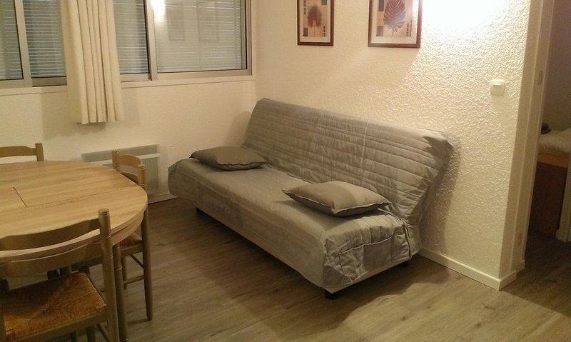 Appartement de montagne , aux pieds des pistes , classé deux etoiles., vacation rental in La Mongie