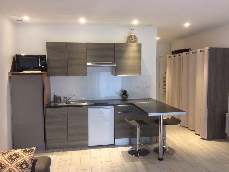 Charmant studio de 35 m2 Jardinet et terrasse, location de vacances à Fouras