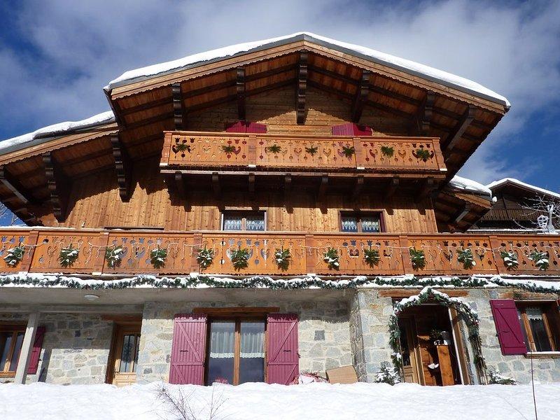 Magnifique chalet 6 personnes à Feissons sur salins face aux 3 vallées, holiday rental in Salins-Fontaine