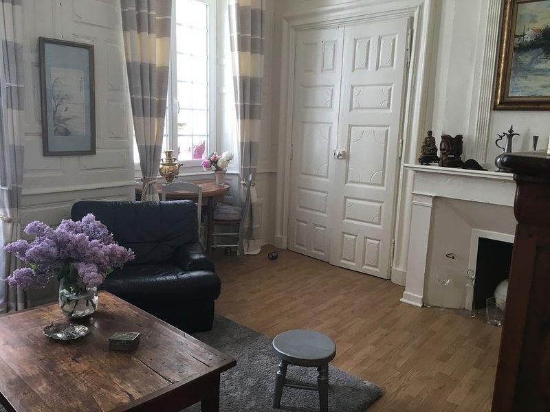 Appartement centre historique, aluguéis de temporada em Atur
